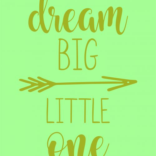 dream big little one ARROW