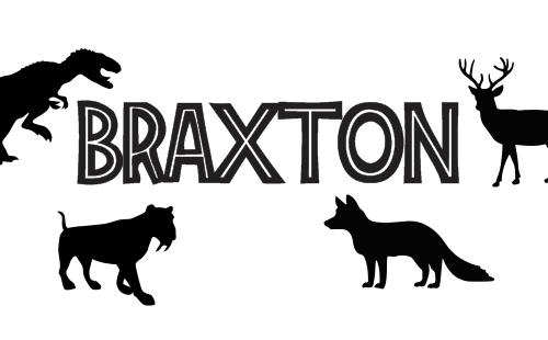 products-braxton1.png